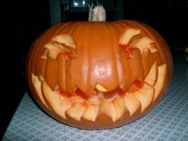 Pumpkin by Chicken008
