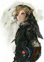 Link by neve25