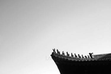 To the Sky by Louvette