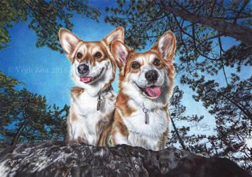 Corgi dogs by 22Zitty22