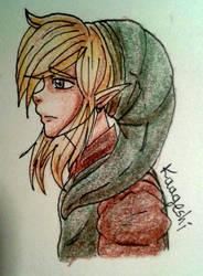 Link by kaageshi