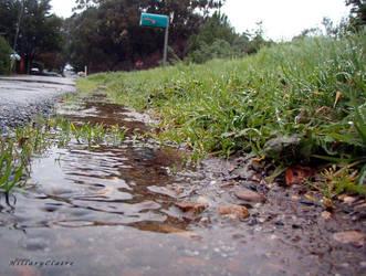 it rained so hard... by twoazaleas