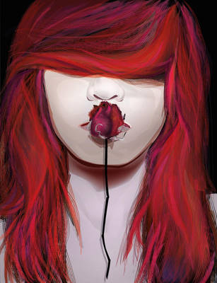 vector the roses are white red by nospy17