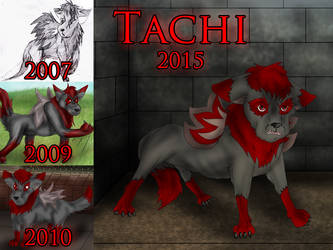 Tachi Over the Years by Muffo11