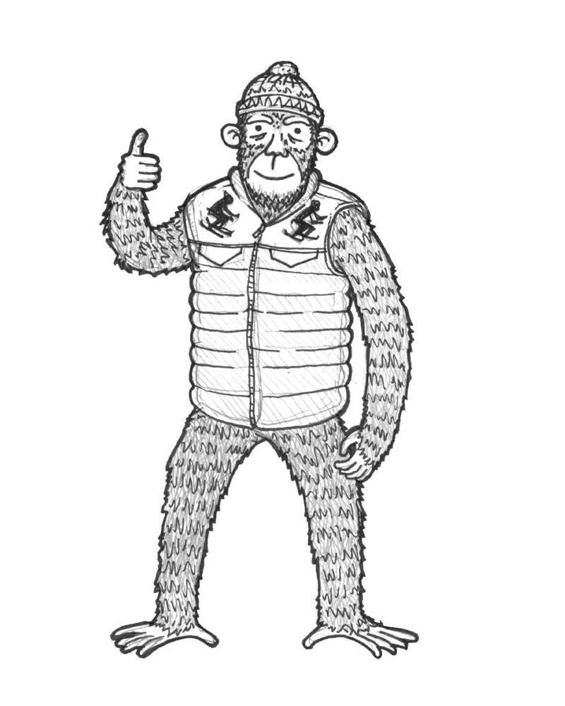 Ape Hand Wiring Diagram Database