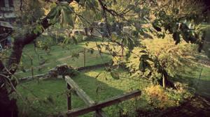 The Garden by Zorodora