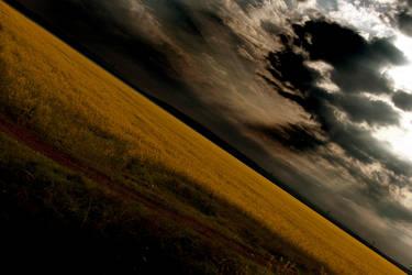 Fields of darkness by ScorpionEntity
