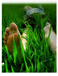 green green grass red red eyes by eclecte