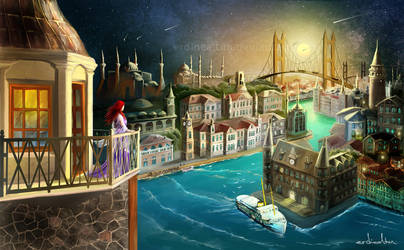 istanbul is mine by erdincaltun