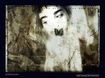 Metamorphosis by darkbanshee