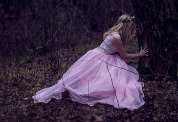 The Lost Princess 2 by LiaSelina