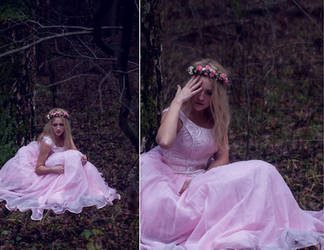 The Lost Princess 3 by LiaSelina