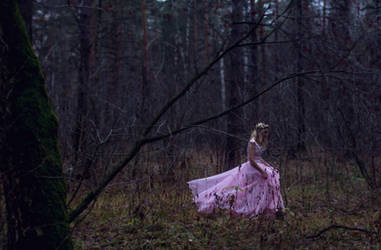 The Lost Princess 5 by LiaSelina
