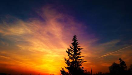 sky tree by quwen