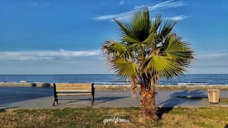 Beach by quwen