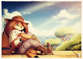 Panorama Lookout by FOXnROLL