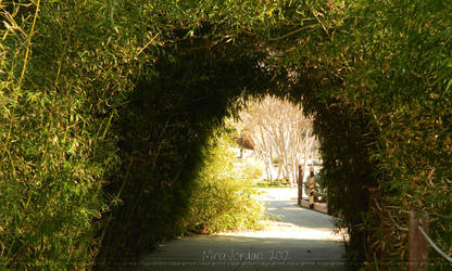Bamboo Path by Minaberries