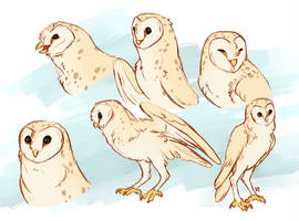Owl Sketchpage by Susiron