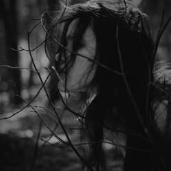 A Quiet by Kostassoid