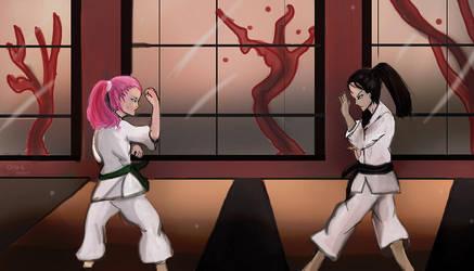 Aelita and Yumi karate training by Atmu