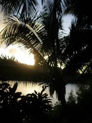hidden sunset by 1pheonix1