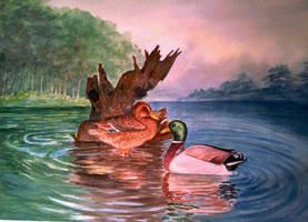 ducks by Shashikanta