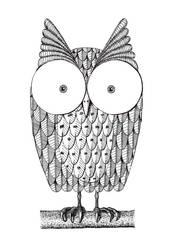Owl by harryett