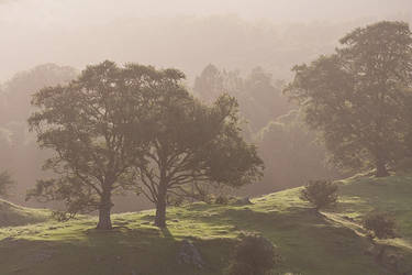 Low Wray, The Lake District by Tuinhek