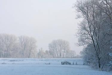 Frosty morning by Tuinhek