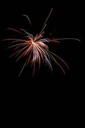 Fireworks I by Tuinhek