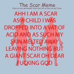 SCAR MEME by Meefs