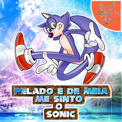Pelado e de meia me sinto o Sonic by fakescs