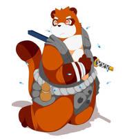 Samurai raccoon by RollSushi