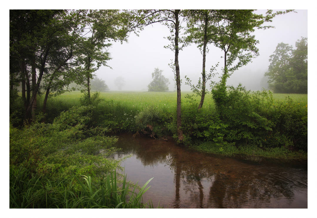 Foggy Morning By The River by VBmonkey26