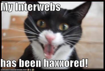 LOLZcat got Haxxored by IamAnAnimefan001