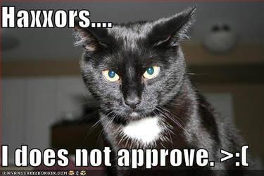 LOLZcat doesn't approve. by IamAnAnimefan001