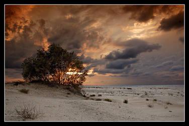 Towards sunset. by israelfi