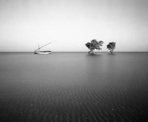 3 trees and a dhow by grevys