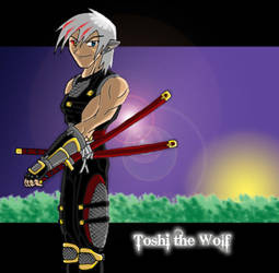 Ninja Wolf by ToshirotheKnightWolf