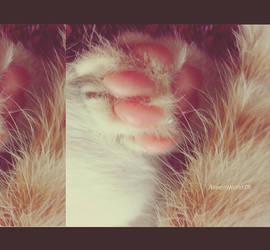 Cute Foot by AlreemWorld