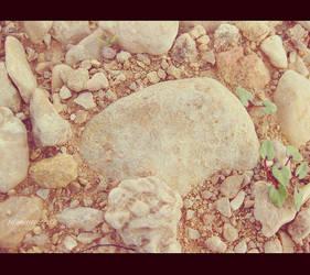 Stones by AlreemWorld