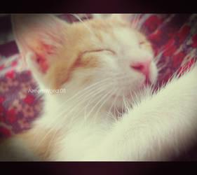 Oh sleepy Cat 2 by AlreemWorld
