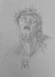 Head of Christ by Johejua