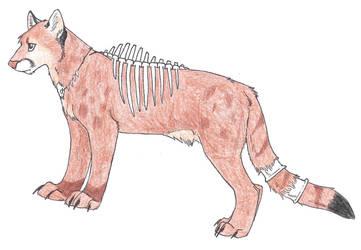 Puma Adoptable by JulieSchuster