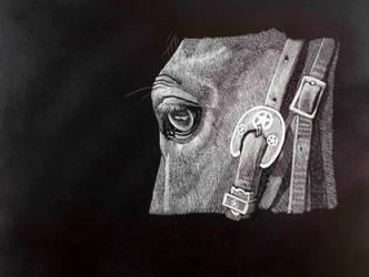 Horse With Bridle by Lara-Shychoski