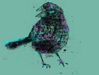 Song Bird by randyotter