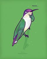 Hmmming bird by randyotter