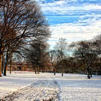 snow is glistenin' by RickHaigh