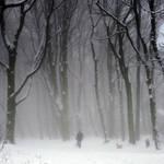 ghost in the fog by RickHaigh