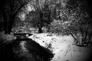 winter wonderland by RickHaigh